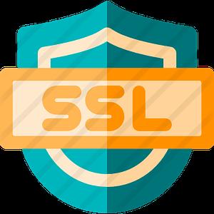 - ssl 300x300 - SSL